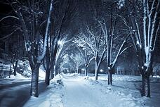 Edgartown Offers Everyone a Chance to Enjoy January 2014 in Style