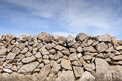 Book AA Island Auto Rental and See Martha's Vineyard's Famous Stone Walls