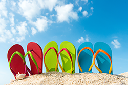 Spring and summer activities on Martha's Vineyard