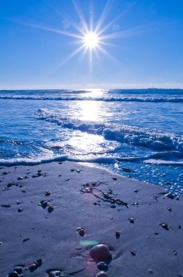 Visiting the Island: The Martha's Vineyard Beach Guide